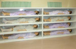人体模型収納庫